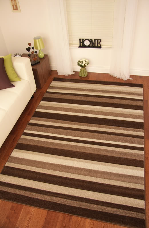 Brown Stripe Rug Area Ideas