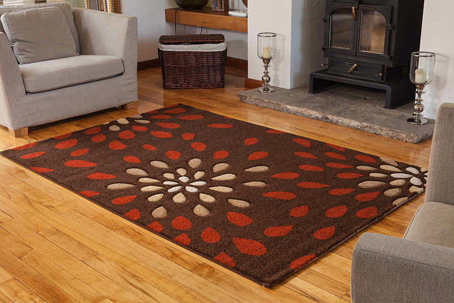 Small Large Terracotta Floral Modern Rugs Soft Easy Clean Living Room Rug Cheap