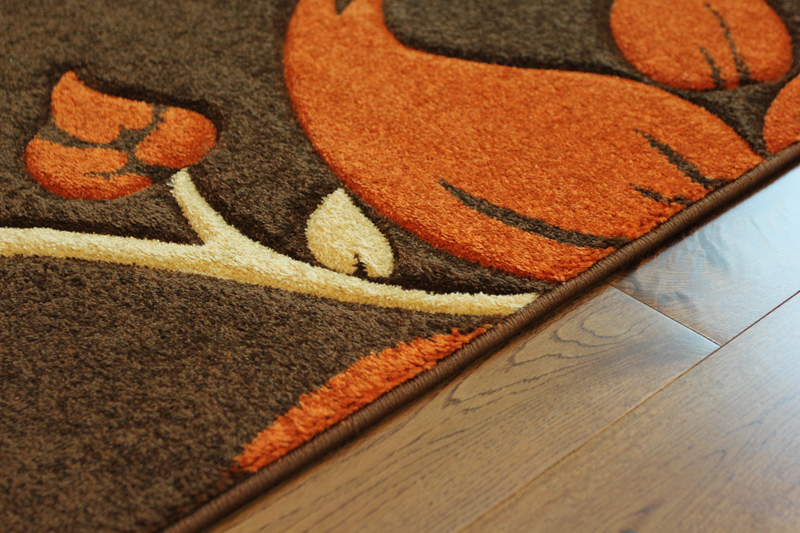Burnt Orange and Brown Rugs